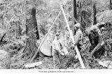 Charlie Anderson, John Fletcher and Harris Hamilton logging, probably on the Olympic Peninsula