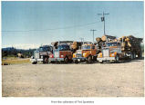 Loaded log trucks parked, probably on the Olympic Peninsula