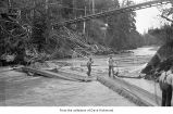 People near a stream beneath a bridge, probably on the Olympic Peninsula