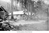 Cabins in woods, probably on the Olympic Peninsula