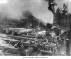 Hall and Bishop Logging Company operations at a loading site, probably in or near Gettysburg