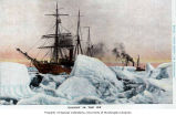 United States Revenue Cutter BEAR and the S.S. CORWIN in background, caught in the ice, near Nome,...