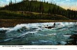 Two men shooting the Whitehorse Rapids, Yukon River, n.d.