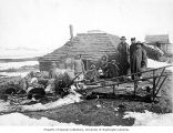 Eskimos and others in front of sod house with sled and dogs, Nome, ca. 1905