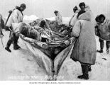 Eskimo men preparing to launch umiak whaling boat, Alaska, n.d.