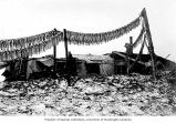 Fish drying racks in front of dwellings, vicnity of Nome, ca. 1903