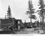 Robert Wakely Snyder family with dogsled team beside a sod and timber cabin, Keewalik River, 1904