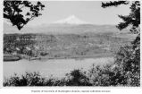 Birds-eye view of Hood River with Mount Hood in background, Hood River, Oregon, ca. 1922