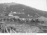 Pack train of men and horses carrying gold from T.S. Lippy's claim, no. 16 Eldorado, Yukon...