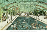 Bathers in the Crystal Gardens pool in Victoria, British Columbia, ca. 1934