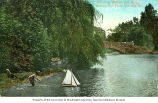 Child playing with a boat by a weeping willow near the bridge in Beacon Hill Park, Victoria,...