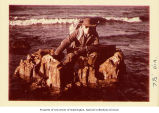 Alaska Department of Fish and Game agent sitting on petrified tree stump, Unga Island, Alaska,...
