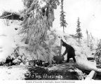 Miner using a windlass to hoist materials from a mine during the winter, possibly Yukon Territory,...