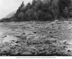 Rocky riverbed looking west from survey station 134, Alaska Midland Railway survey, Alaska, 1909