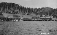N.W.F. Co. processing plant from water, Hunter Bay, Alaska, ca. 1908