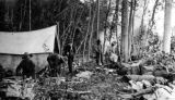 Kuskokwim Reconnaissance expedition members in Camp No. 38, near the Skwentna River, Alaska, July...