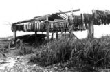 Native fish drying racks, Libby, McNeill & Libby cannery, Ekuk