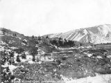 Looking across hillside above river, near planned Alaska Railroad line, probably near Fairbanks,...