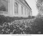 Side of the Alaska Building with flower bushes, Alaska-Yukon-Pacific-Exposition, Seattle,...