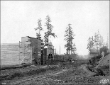 Grading crew leveling site for the Pay Streak, Alaska-Yukon-Pacific Exposition, Seattle,...