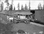 Delivery of the Canadian exhibits by the Northern Pacific Railroad, Alaska Yukon Pacific...