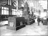 Coal exhibits from Roslyn Mines and the Evans Creek Coal and Coke Company in the Mines Building,...