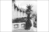 Agriculture Building facade showing decorative urn, Alaska-Yukon-Pacific Exposition, Seattle, 1909