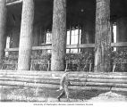 Lumber porch posts, Forestry Building, Alaska-Yukon-Pacific-Exposition, Seattle, Washington, 1909
