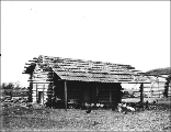 Log cabin with shingle roof possibly used as a chicken coop, probably Washington state.