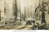Passenger car with many passengers on a dirt road near Lake Crescent, Clallam County ; message on...