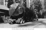 Lapoel Auto Camp showing a log truck with a large fir log parked near a small building, Clallam...