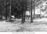 Camp Grounds and cabin in La Push, ca. 1930