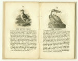 Natural history of water birds (pp. 14-15)