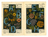 The alphabet of flowers and fruit (pp. [1-2])
