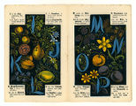 The alphabet of flowers and fruit (pp. [3-4])