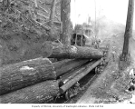 Logging crew loading logs onto flatbed railroad cars, donkey engines in background, Clemons...