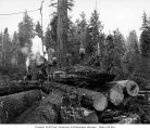 Loggers on stack of logs with donkey engine in background Merrill & Ring Lumber Company,...