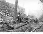 Loggers at loading site with two donkey engines, spartree, and logs on skeleton cars, National...