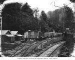 Railroad logging camp, National Lumber and Manufacturing Company, probably in Grays Harbor County,...