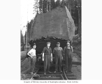 Logging crew and large log loaded onto flatbed railroad car, Clemons Logging Company, ca. 1924
