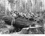 Loggers in the woods, camp 21, Schafer Brothers Logging Company, probably in Grays Harbor County,...