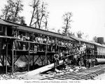 Loggers and mess hall crew at camp 6, Schafer Brothers Logging Company, Brady, n.d.