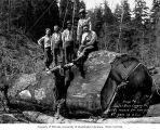 Loading crew, camp 6, Schafer Brothers Logging Company, probably in Grays Harbor County, n.d.