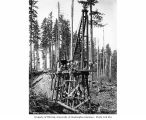 Construction crew and pile driver with railroad trestle under construction, camp 8, Schafer...