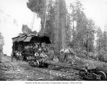 Crew at loading site with donkey engine and skeleton car, camp 21, Schafer Brothers Logging...