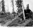 Loggers at loading site with donkey engine and spartree, camp 1, Schafer Brothers Logging Company,...