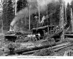 Donkey engines and loading crew, camp 6, Schafer Brothers Logging Company, probably in Grays...
