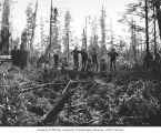 Loggers in the woods, Stearns Logging Company, near Carlisle, ca. 1929