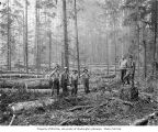 Logging crew in the woods, Vance Lumber Company, near Malone, ca. 1916