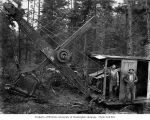 Construction crew with Osgood steam shovel, Ward-Sargent Timber Company, Ocosta, ca. 1928